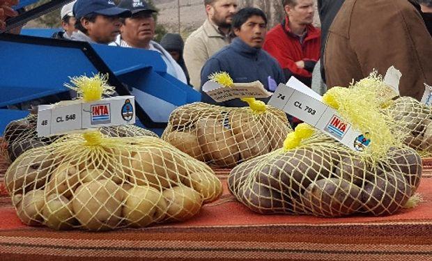 Comunidades nativas de Jujuy se acercaron al conocimiento científico para conservar la variabilidad genética.