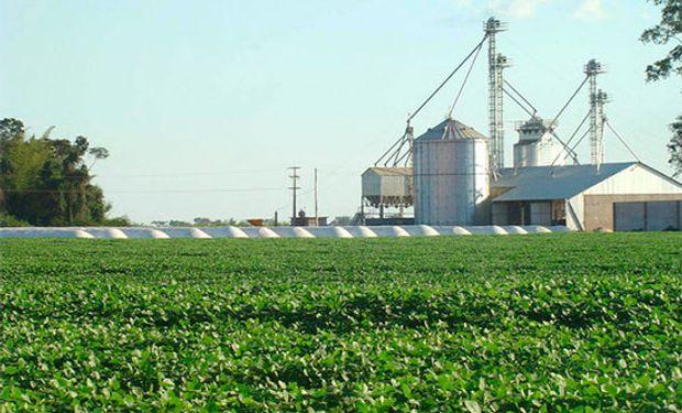 Senado paraguayo aprueba impuesto al agro