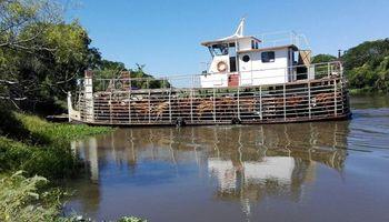 Crecida del Paraná: productores en alerta y movilización