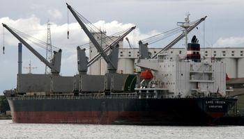 Paro por diez días en el Senasa paraliza las exportaciones
