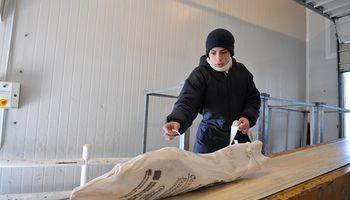 Japón: un nuevo mercado para la carne bovina y ovina de la Patagonia
