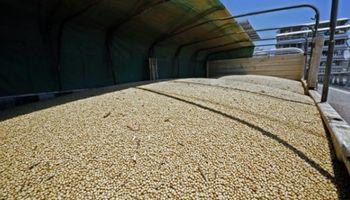 Estiman un crecimiento de US$ 6.500 millones para el PBI agroindustrial