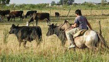 El bono de $ 5.000 que decretó el Gobierno excluye a los trabajadores agrarios