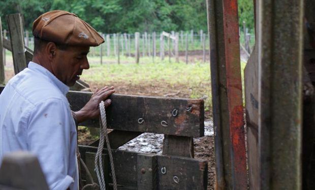 Aumento de la prestación por desempleo para trabajadores rurales.
