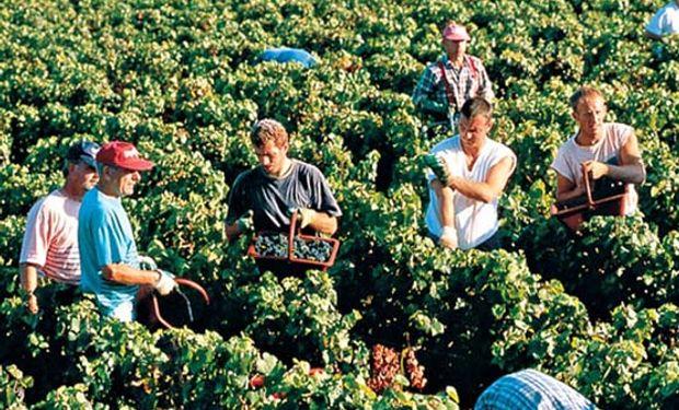 Aumenta empleo no agrícola en zonas rurales