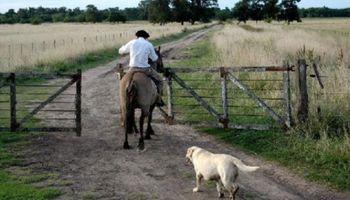 El contrato de trabajo agrario: dos situaciones de cambio de empleador