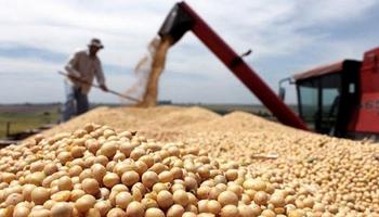Regímenes especiales de Compensación y Estímulo para pequeños productores de soja y cooperativas