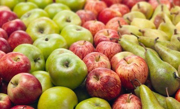 El sector frutícola representa 50 mil hectáreas implantadas en el territorio nacional.