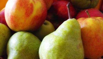 Arranca cosecha de peras y manzanas