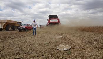 Video: 7 marcas de cosechadoras presentaron pruebas a campo para reducir pérdidas de hasta 142 kg/ha en soja