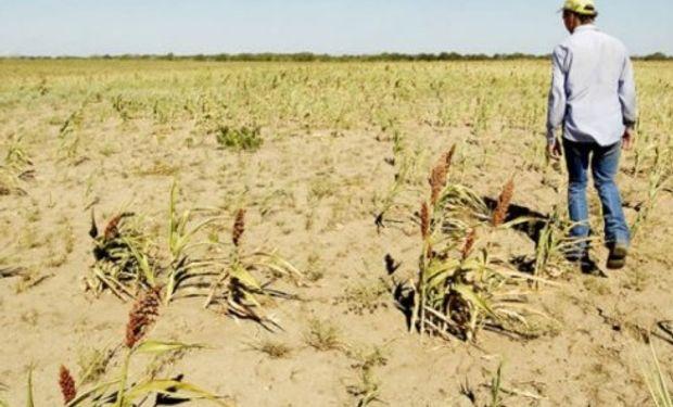 En la provincia de Santa Fe, las pérdidas estimadas por la menor producción agrícola ascenderían a más de US$ 190 millones.
