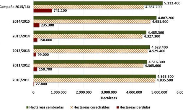 Hectáreas sembradas vs hectáreas cosechables.