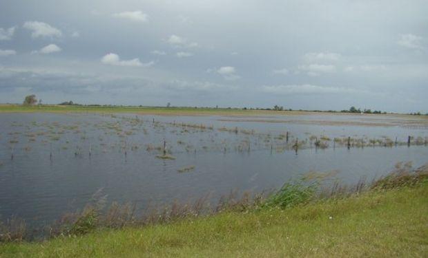 Campos de corazón agrícola argentino, afectados por las inundaciones.