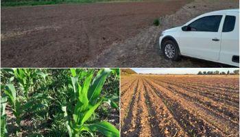 Manejo en áreas periurbanas: resultados de una primera experiencia en soja y maíz de Pergamino