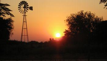 Sector agropecuario: luces y sombras del futuro