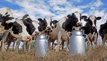 """""""Hay suficientes fortalezas en la lechería para que arranque sola"""""""