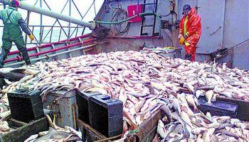 Con exportaciones récord, el sector pesquero viene viento en popa