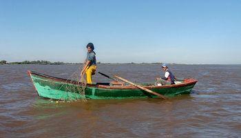 Por la bajante del Paraná, limitan al 50 % la exportación de pescados de río