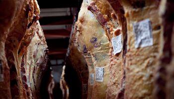 Exportación: cómo se clasifica y se tipifica la carne argentina