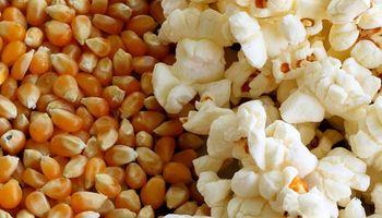 Pochoclo o pororó: el maíz for export preferido de las vacaciones de invierno