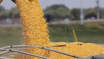 Recomiendan hacer valer la disposición vigente sobre la compraventa de granos