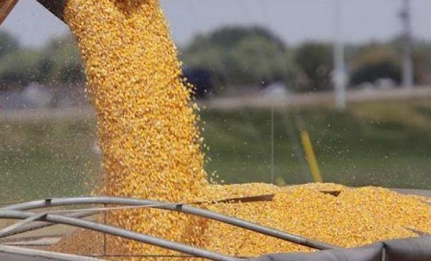 La Sociedad Rural recomienda a sus Socios y productores hacer valer la disposición vigente.
