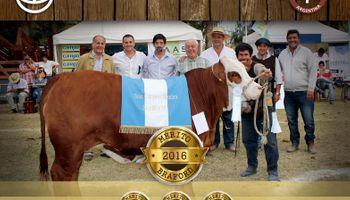 Pilagá logró por cuarto año consecutivo el Premio al Mérito Braford