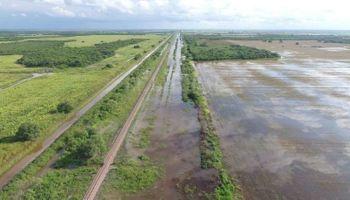 Santa Fe presentó el plan de obras para recuperar hectáreas productivas en los Bajos Submeridionales