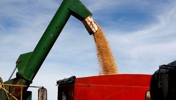 Estímulo Agrícola Plan Belgrano: Agroindustria informó el precio de junio