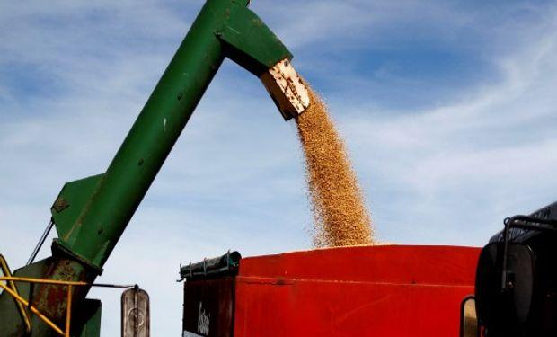 Estímulo Agrícola Plan Belgrano: precio promedio para el pago a los productores de soja correspondiente a junio.