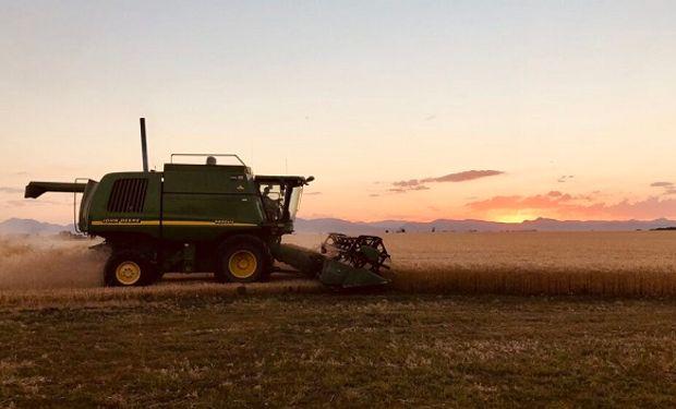 Planificación fiscal en empresas de agro: una guía para poner en marcha el 2021