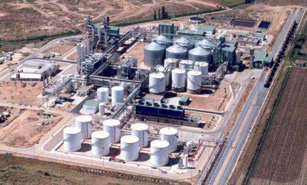 Se derrumba el precio del biodiesel
