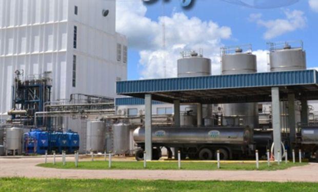 Impulso a las exportaciones lácteas