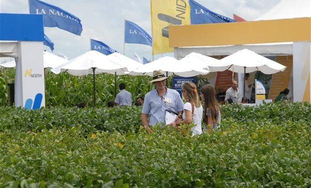 La excelencia en las variedades presentadas es una de las características de la muestra.Foto:LA NACION/Expoagro.