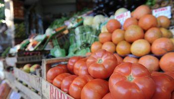 Amplio rechazo a la importación de tomate