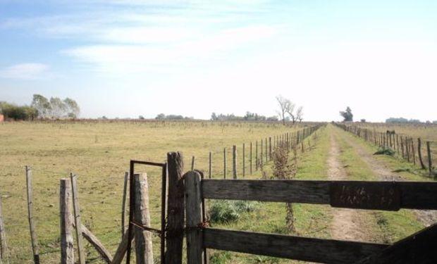 Cortocircuito entre entidades del agro y la provincia de Buenos Aires por una medida de ARBA.