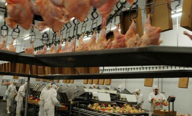 80.000 son los pollos que Avex faena por día.