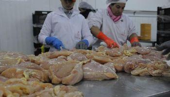 Uruguay busca colocar pollos en Estados Unidos
