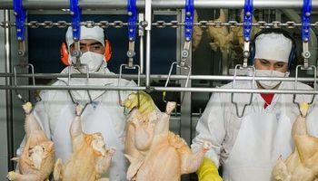 Corea del Sur evaluó la producción de carne aviar y bovina para abrir un nuevo mercado