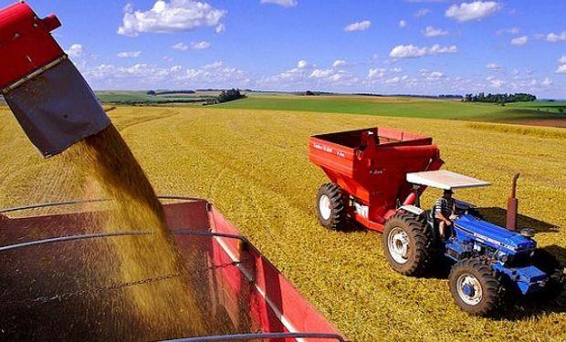 El clima colaboró en el avance de la siembra y la cosecha