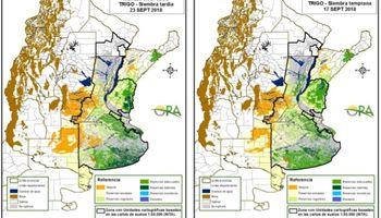 Se mantienen las reservas adecuadas para el trigo en zona núcleo
