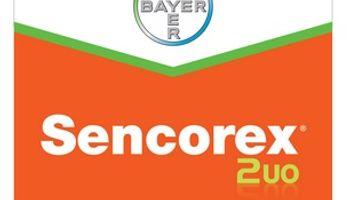 Bayer lanza herbicida que controla Amaranthus palmeri