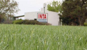 Márgenes brutos para cultivos de inviernos y tendencia climática: los ejes de las charlas online del INTA