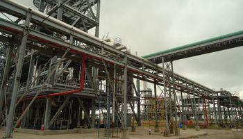 Ya pasó lo peor: reflota el precio del biodiesel
