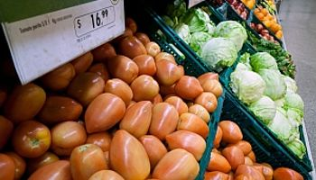 Índice de precios de alimentos de FAO permaneció estable
