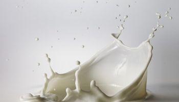 Piden una urgente recomposición de precios de la leche