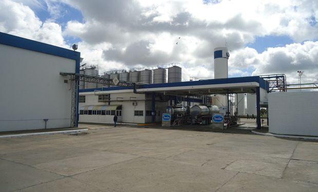 Industrias lácteas no pueden cubrir los costos básicos.