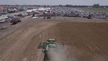 De la venta de granos a la compra de insumos, el productor pierde un 7,1 % del valor de la cosecha