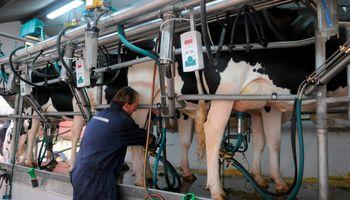 Uruguay: bajó precio de la leche y el gobierno salió a rescatar al sector