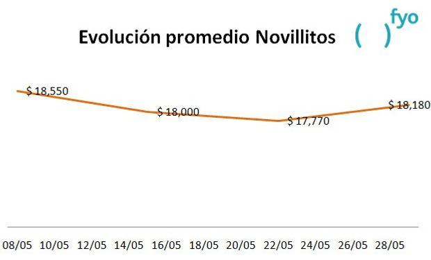 El gráfico muestra la evolución del precio promedio de la categoría Novillitos en el Mercado de Liniers durante el mes de mayo. Fuente: fyo